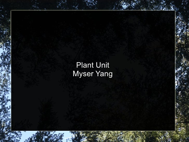 Plant Unit Myser Yang