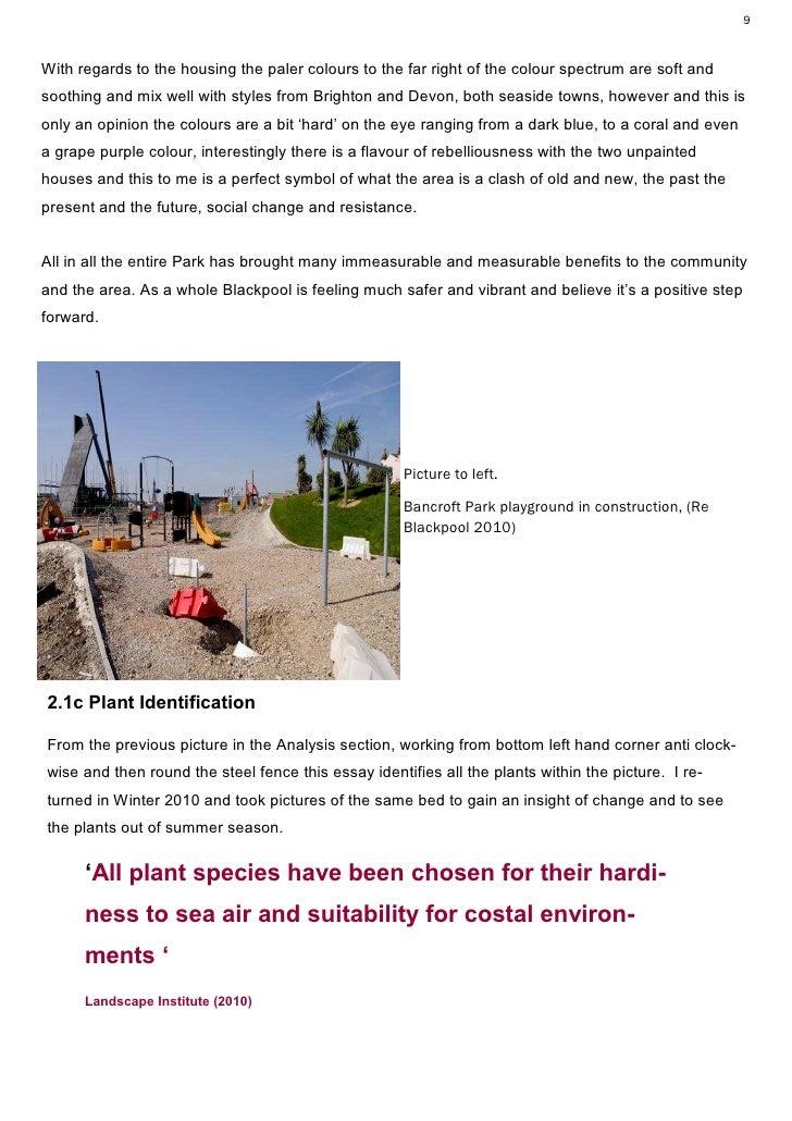 essay plant