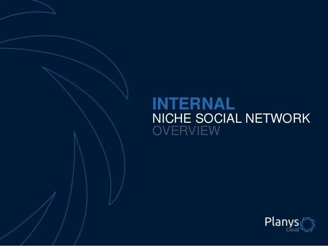 INTERNAL NICHE SOCIAL NETWORK OVERVIEW