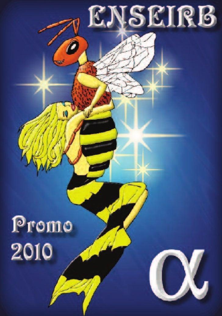 FICHE D'IDENTITE   Nom : ENSEIRB Surnom : L'Eirb Population : Le peuple de l'Eirb  Mascotte : L'abeille Couleurs : Jaune e...