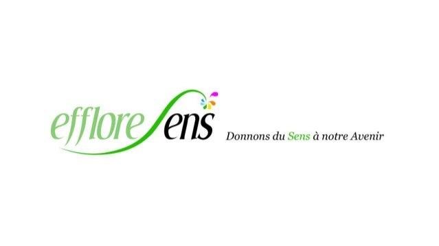 Studio EffloreSens | Communication, journalisme et marketing EffloreSens est un Studio spécialisé dans la communication gl...