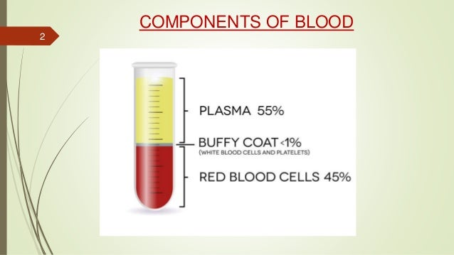 COMPONENTS OF BLOOD 2