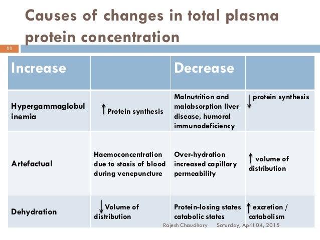 Plasma protein synthesis