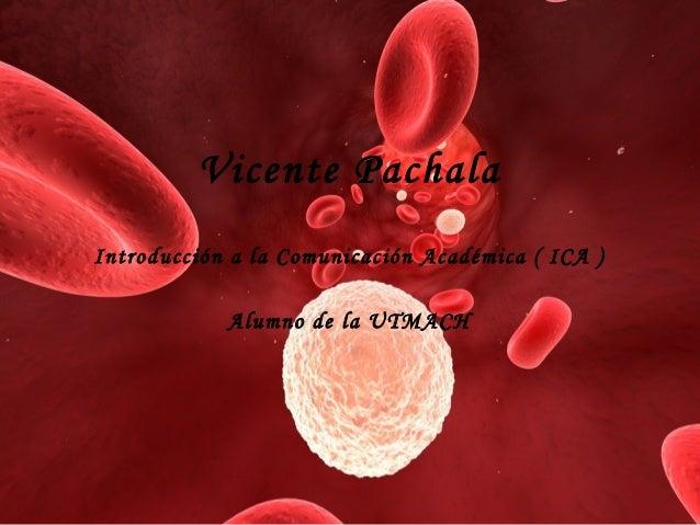 Vicente Pachala Introducción a la Comunicación Académica ( ICA ) Alumno de la UTMACH