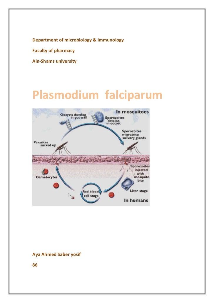 Department of microbiology & immunologyFaculty of pharmacyAin-Shams universityPlasmodium falciparumAya Ahmed Saber yosif86