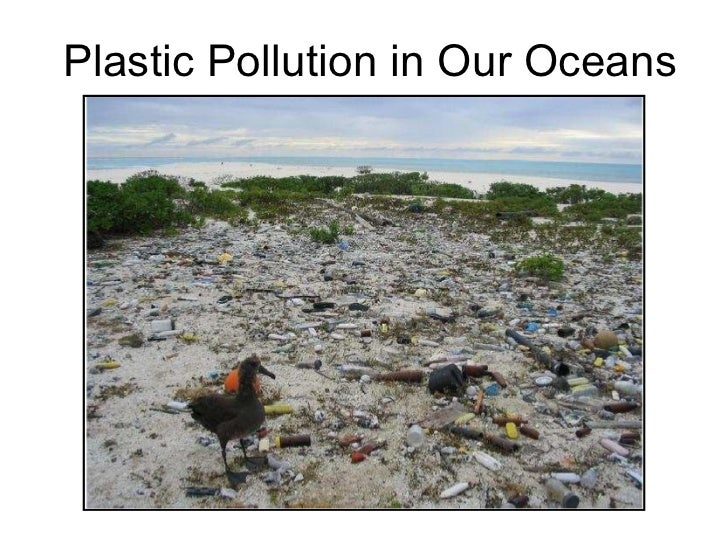 Plastic Pollution in Our Oceans