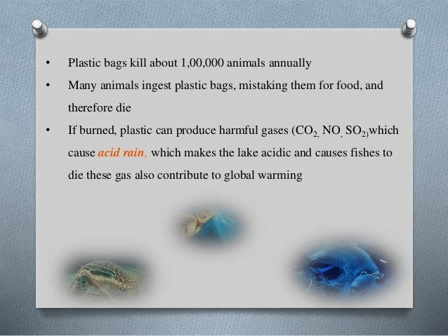 Plastic effect on humans and animal