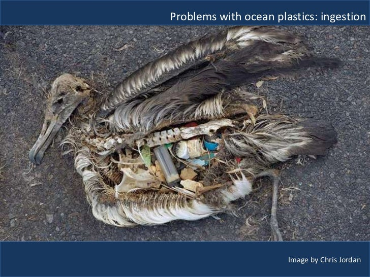 Plastic Pollution Policies Amp Wicked Problems