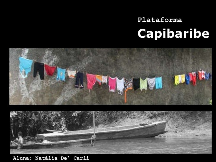 Plataforma   Capibaribe Aluna: Natália De' Carli