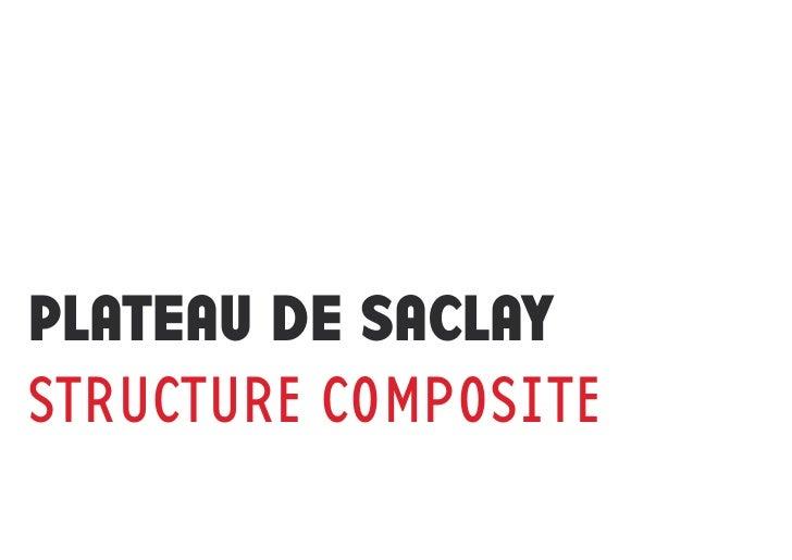 PLATEAU DE SACLAYSTRUCTURE COMPOSITE