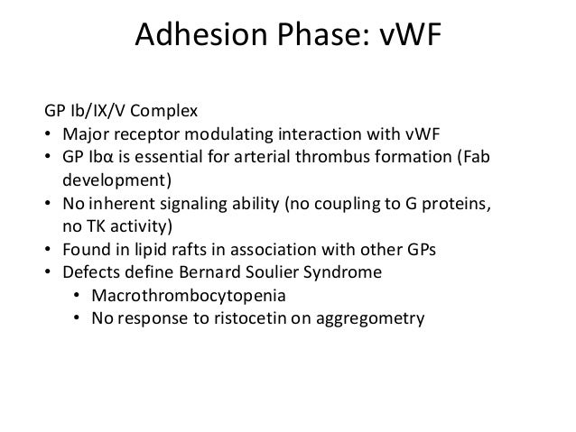AdhesionPhase: Collagen GP VI • Low-affinity but high impact for binding to collagen • Signals through Src kinases, as wel...