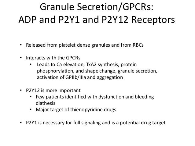 GPCRs: Epinephrine and α2A Receptor • Weak agonist—cannot induce shape change or activate PLC • Reduces levels of cAMP wit...