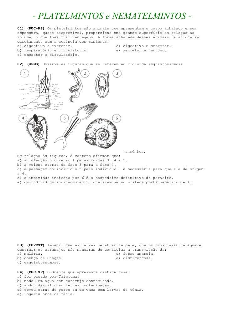 - PLATELMINTOS e NEMATELMINTOS - 01) (PUC-RS) Os platelmintos são animais que apresentam o corpo achatado e sua espessura,...