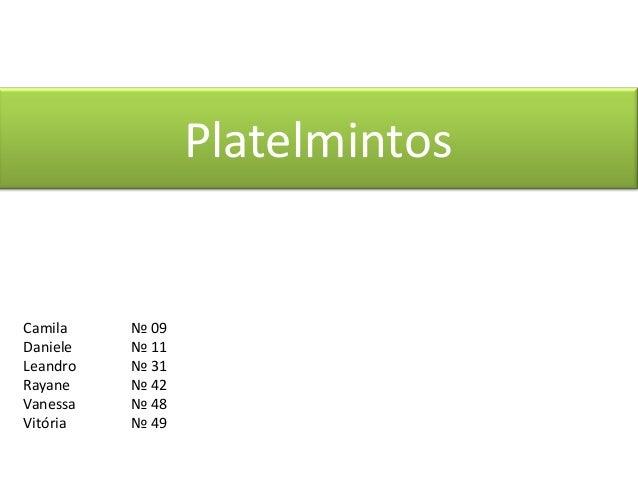 Platelmintos  Camila Daniele Leandro Rayane Vanessa Vitória  № 09 № 11 № 31 № 42 № 48 № 49