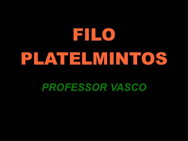 FILO PLATELMINTOS PROFESSOR VASCO