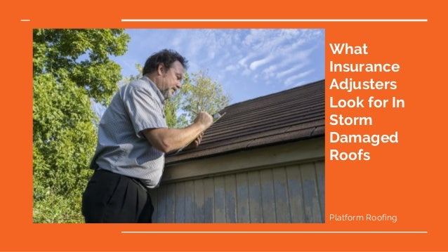 What Insurance Adjusters Look for In Storm Damaged Roofs Platform Roofing