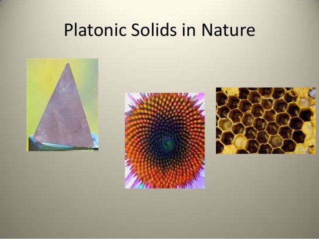 Platonic Solids In Nature The gallery for -->...