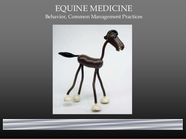 EQUINE MEDICINE Behavior, Common Management Practices