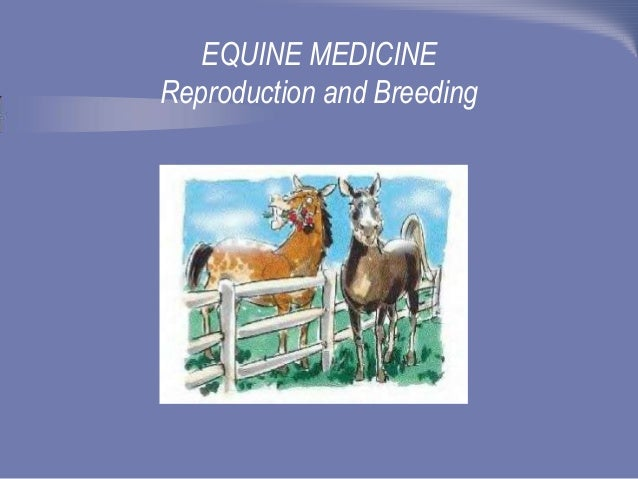 EQUINE MEDICINE Reproduction and Breeding