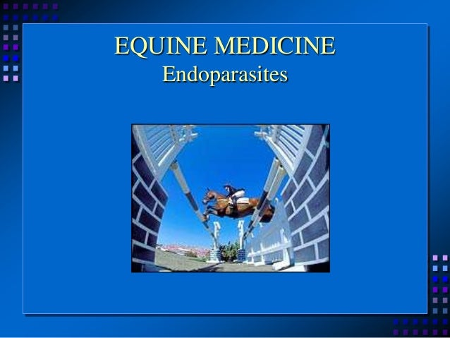 EQUINE MEDICINE Endoparasites