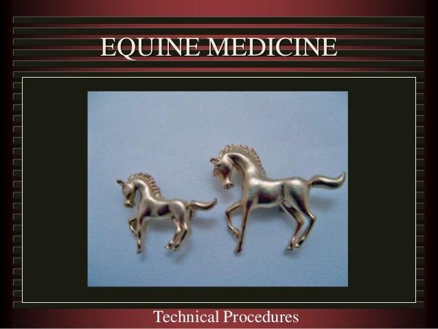 EQUINE MEDICINE Technical Procedures