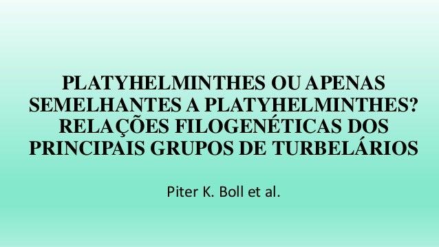 PLATYHELMINTHES OU APENAS SEMELHANTES A PLATYHELMINTHES? RELAÇÕES FILOGENÉTICAS DOS PRINCIPAIS GRUPOS DE TURBELÁRIOS Piter...