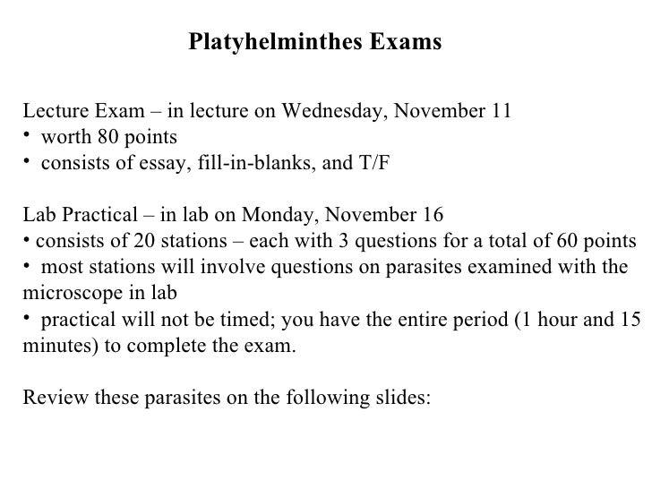 Platyhelminthes Exams <ul><li>Lecture Exam – in lecture on Wednesday, November 11 </li></ul><ul><li>worth 80 points </li><...