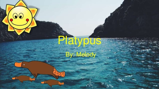 Platypus By: Melody