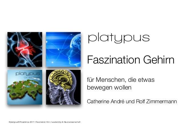 für Menschen, die etwas bewegen wollen Catherine André und Rolf Zimmermann Faszination Gehirn Bern Solothurn Basel Luzern ...