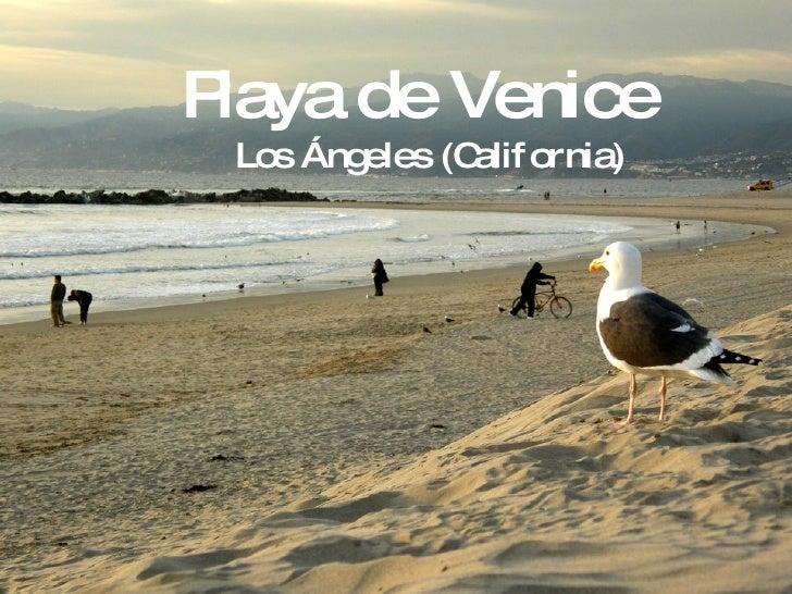 Playa de Venice Los Ángeles (California)