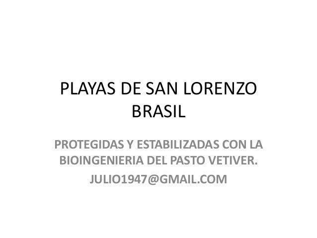 PLAYAS DE SAN LORENZO BRASIL PROTEGIDAS Y ESTABILIZADAS CON LA BIOINGENIERIA DEL PASTO VETIVER. JULIO1947@GMAIL.COM