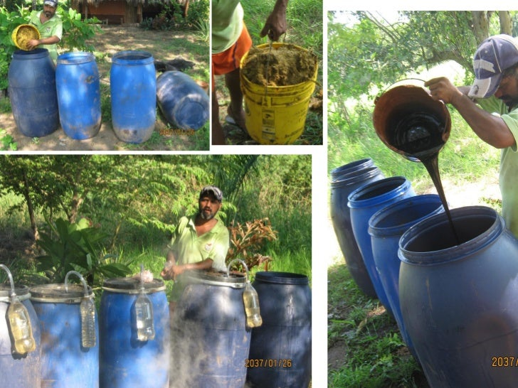 Playa viva fertilizer workshop nov 2011