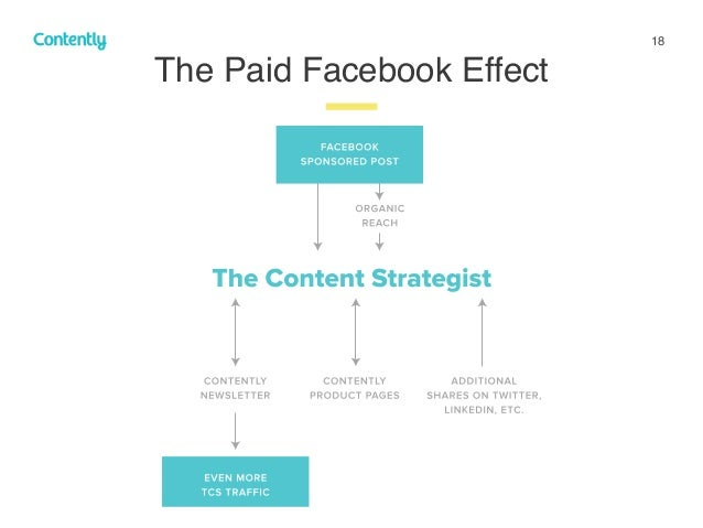 18 The Paid Facebook Effect z