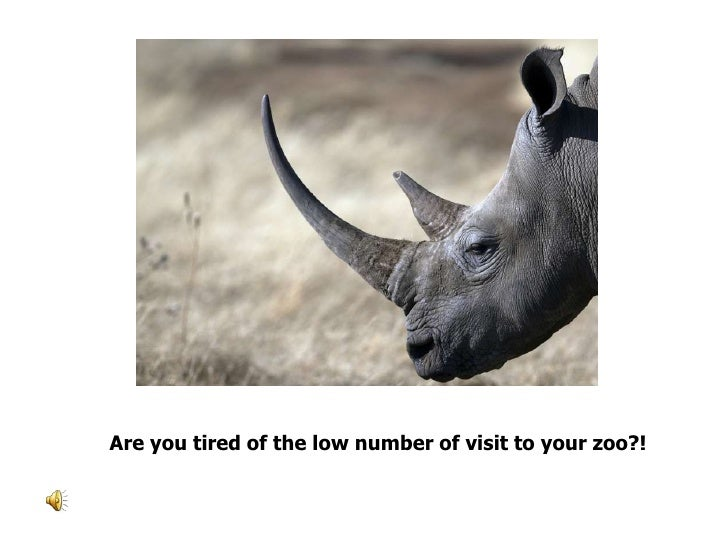 Are you tired of the low number of visit to your zoo?!