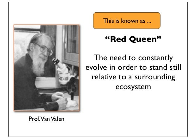 """""""Red Queen"""" The need to constantly evolve in order to stand still relative to a surrounding ecosystem Prof.VanValen This i..."""