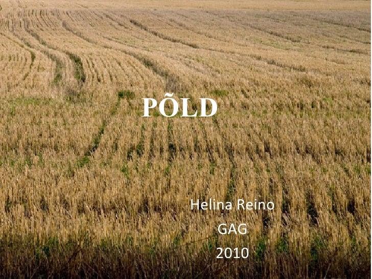 PÕLD Helina Reino GAG 2010