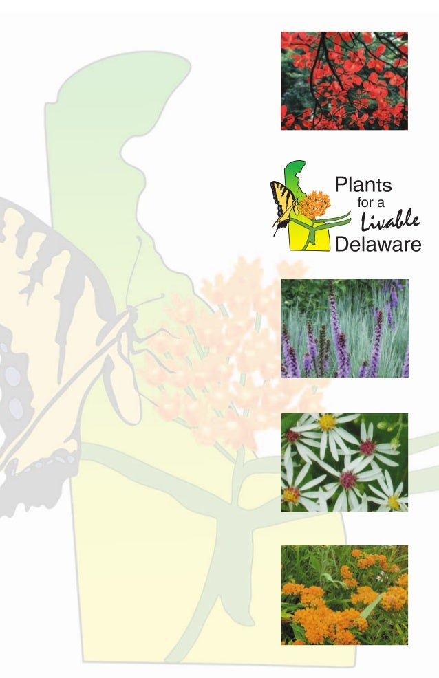 Plants for a Livable Delaware is a campaign to identify and promotesuperior plants that thrive without becoming invasive. ...