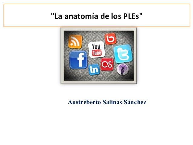 """""""La anatomía de los PLEs"""" Austreberto Salinas Sánchez"""