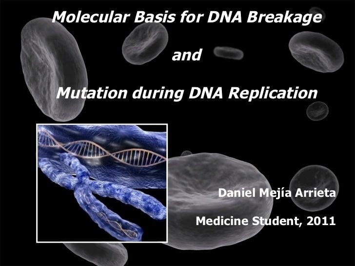 Molecular Basis for DNA Breakage and  Mutation during DNA Replication  Daniel Mejía Arrieta Medicine Student, 2011