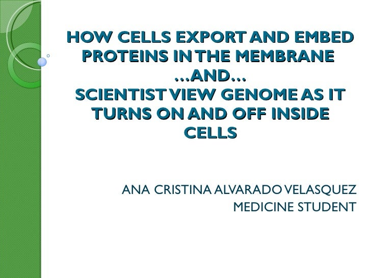 HOW CELLS EXPORT AND EMBED PROTEINS IN THE MEMBRANE  …AND… SCIENTIST VIEW GENOME AS IT TURNS ON AND OFF INSIDE CELLS   ANA...