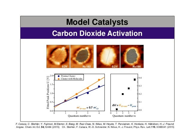 Models for Heterogeneous Catalysts: complex materials at the