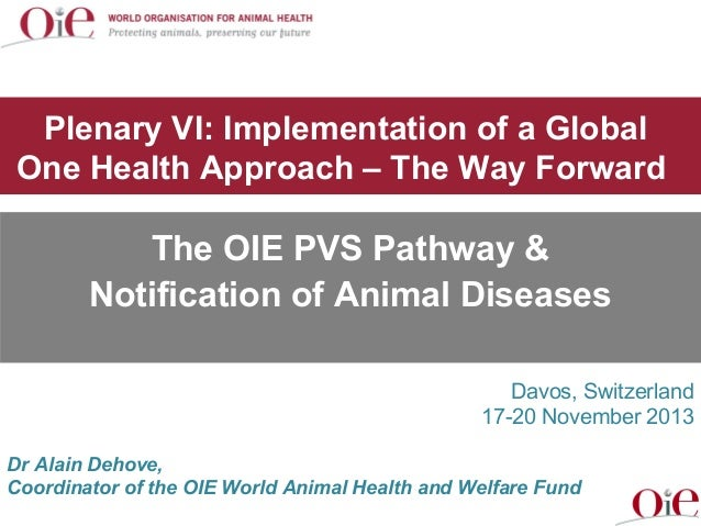Plenary VI: Implementation of a Global One Health Approach – The Way Forward  The OIE PVS Pathway & Notification of Animal...
