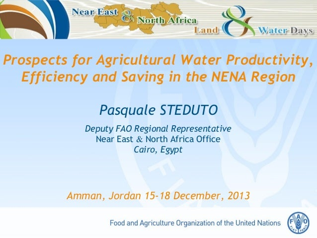 Prospects for Agricultural Water Productivity, Efficiency and Saving in the NENA Region Pasquale STEDUTO Deputy FAO Region...