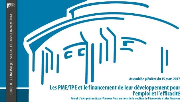 Les PME/TPE et le financement de leur développement pour l'emploi et l'efficacité Assemblée plénière du 15 mars 2017 Proje...
