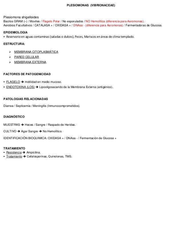 PLESIOMONAS (VIBRIONACEAE) Plesiomona shigelloides Bacilos GRAM (–) / Moviles / Flagelo Polar / No esporulados / NO Hemolí...