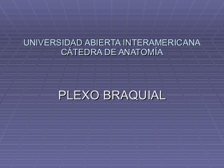 UNIVERSIDAD ABIERTA INTERAMERICANA CÁTEDRA DE ANATOMÍA PLEXO BRAQUIAL