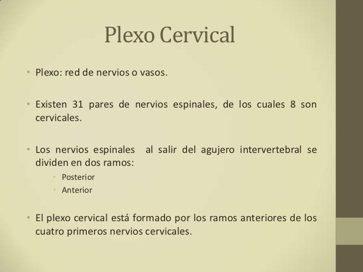 Plexo cervical Slide 2