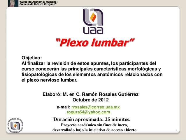 """""""Curso de Anatomía Humana: Carrera de Médico Cirujano""""                         """"Plexo lumbar""""  Objetivo:  Al finalizar la ..."""