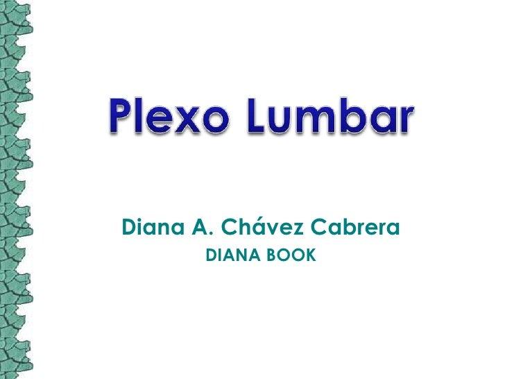 Plexo Lumbar<br />Diana A. Chávez Cabrera<br />DIANA BOOK<br />