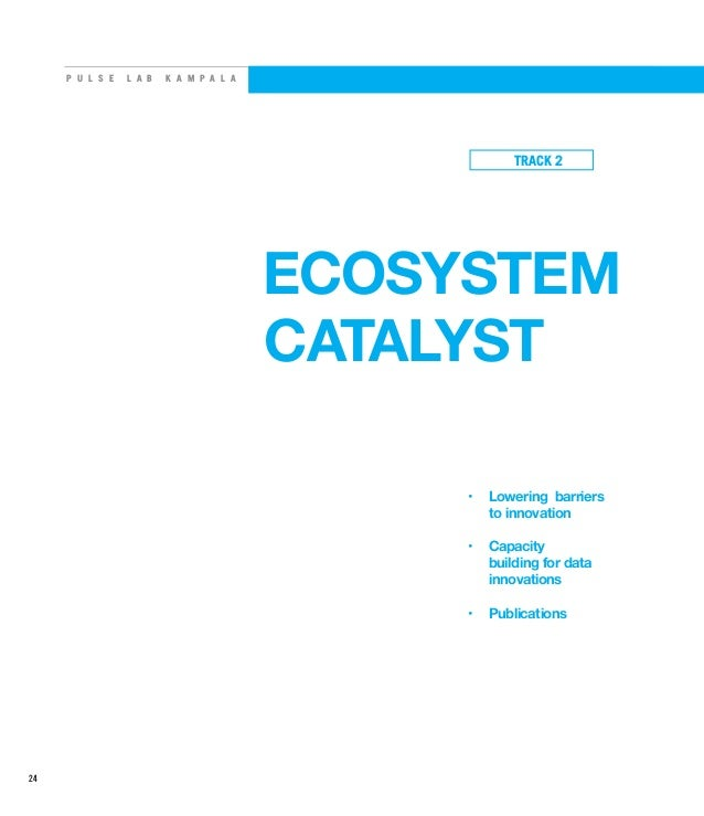 P U L S E L A B K A M P A L A ECOSYSTEM CATALYST • Lowering barriers to innovation • Capacity building for data innovati...